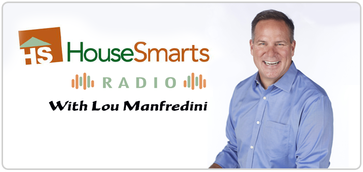 5 minute mold test as heard on the lou manfredini show