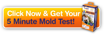 Click Here To Get Your 5-Minute Mold Test