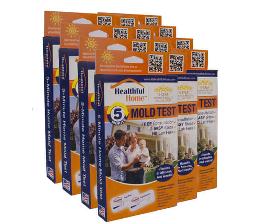 5-minute-mold-test-kit-12-pack