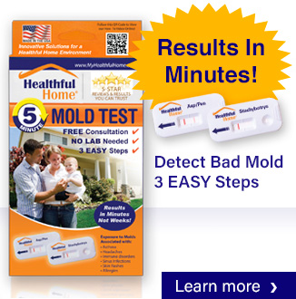 Healthful Home Test For Bad Mold