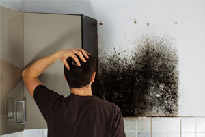 black mold problem in the home